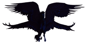 The bringer of the Night by Blusl