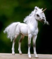 Little Foal- 4 by SovaeArt