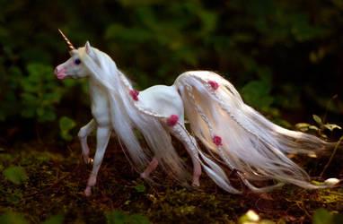Unicorn Foal: Florescence II by SovaeArt