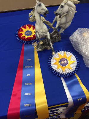 Breyerfest 2016 Best Customs Contest Winner by SovaeArt