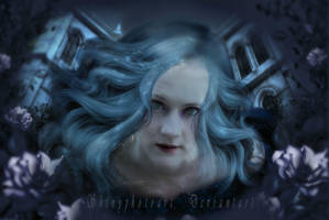 Blue Rose by ShinyphotoArt