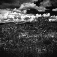 Dream land II by Menoevil