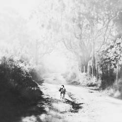 Wayside dog III by Menoevil