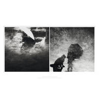 And then it rained Diptych by Menoevil