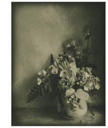 Flora's Lament by Menoevil