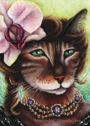 Miss Orchid Fairy Cat by TaraFlyArt