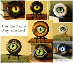 Five Cat Eye Paintings on Wooden Plaques by TaraFlyArt