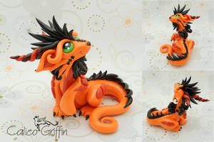 Orange sitting Cayo Dragon by CalicoGriffin