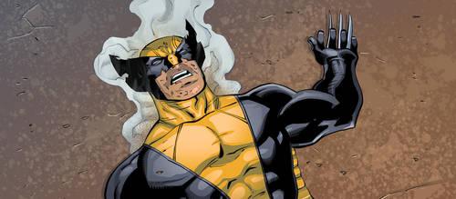 Wolverine by robtlsnyder