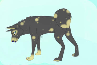Canine adopt- 200 pts by anaracorra