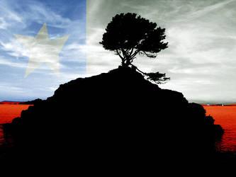 MI banderita by viva-chile