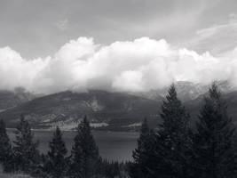 Black + White Bliss by Lancerlover