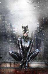 Catwoman by Josh-Finney