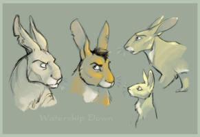 The Rabbits of Watership Down by lyosha