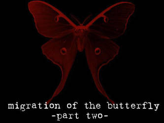 Migration of the Butterfly, 2 by suture