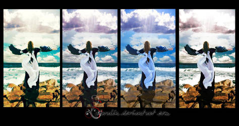 feel the breeze compilation by shwalin