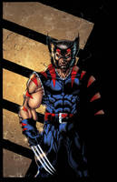 AOA Wolverine colored by Kid-Destructo