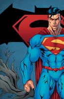Superman vs Batman by Kid-Destructo