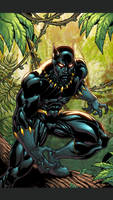 Black Panther by Kid-Destructo