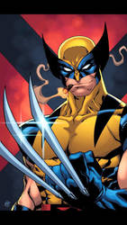 Wolverine  by Kid-Destructo