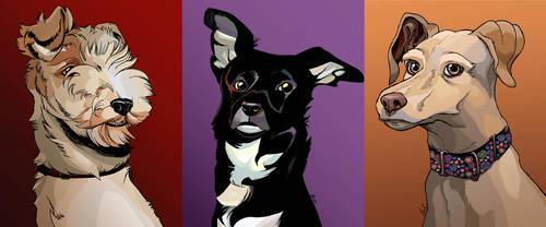 My dogs by Ovi-One