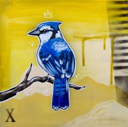Blue Jay by TetraModal