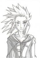 Shaded Axel by Silverookami