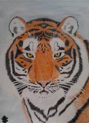 Tiger Portrait by Yama-no-Mouken