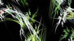 Bamboo Spirits by 3dcheapskate