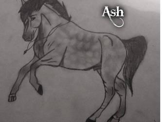 Ash by xXUnicorn-SwaggerXx