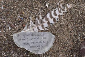 Dream Big by Rhiallom