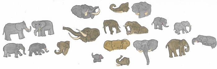 Elephants by brazilianferalcat