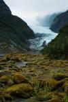 Franz Joseph Glacier by TrollDuNord