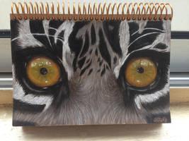 TIGER EYES by azuh