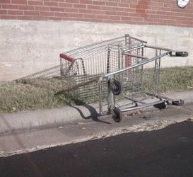 Freedom Lika Shopping Cart by CarlyAnn