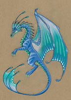 Blue Frilled Dragon by celticsidhe