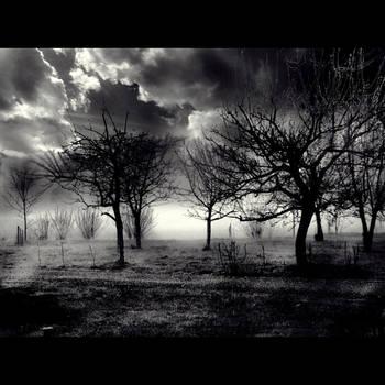 UnO world by Pitrisek