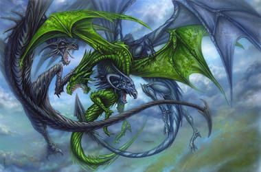 A Duel of Dragons by studioscarab