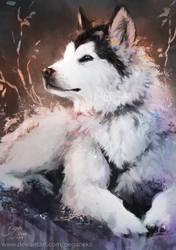 Doggie by Pegaite