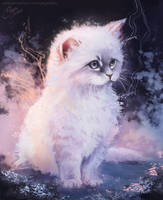 Fluffy Kitten by Pegaite