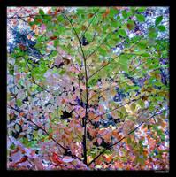Falling for Fall... by Jennbawa