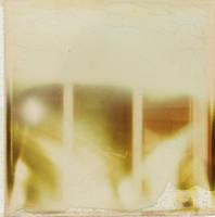 Isolation by Mxyomatosis