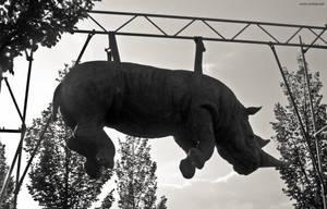 De Mis Viajes - Rinoceronte Colgante by carbajo