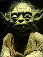 Star Wars - Yoda by carbajo