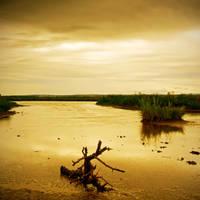 Dead Marsh II by DavidCraigEllis