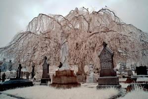 Infrared Churchyard II by DavidCraigEllis