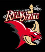 Reek Strike Squadron of the Rebel Legion by siebo7