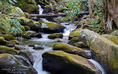 Crying Creek Falls by violakat03