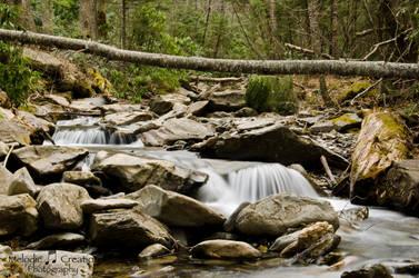 Alum Cave Creek falls by violakat03