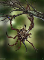 Asymmetrical Tree Crab by rob-powell